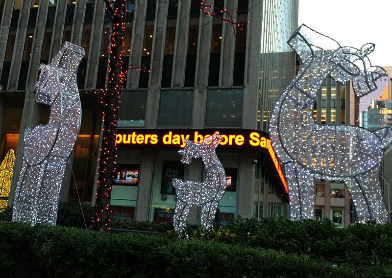 Radio City Reindeer